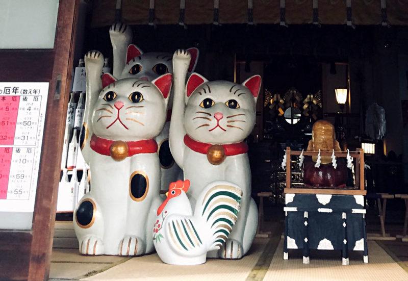 浅草・今戸 招き猫